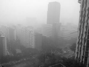 Torrential Rain does not deter the Singapore Spirit